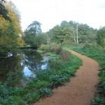 Riverside walk 1